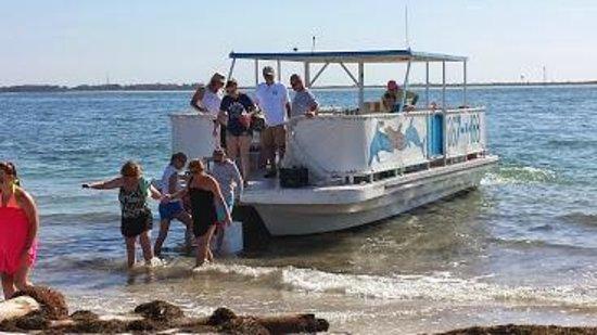 Dolphin Landings Charter Boat Center: Pontoon we took to Egmont Key