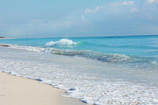Hilton Bentley Miami/South Beach: gorgeous beach