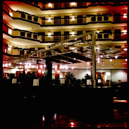Embassy Suites by Hilton Dulles - North/Loudoun : Lobby
