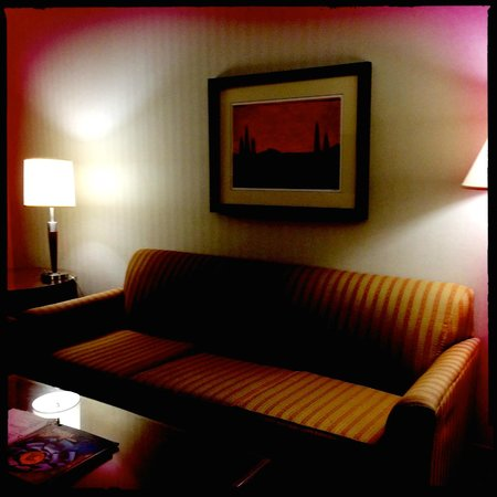 Embassy Suites by Hilton Dulles - North/Loudoun: Seating area in the suite