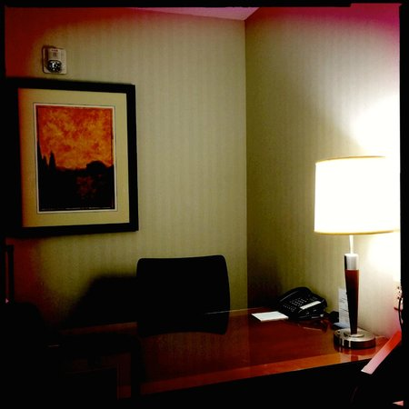 Embassy Suites by Hilton Dulles - North/Loudoun: Desk