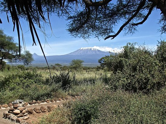 Kibo Safari Camp : View from our tent