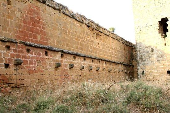 Castillo de Davalillo: Lateral por el interior
