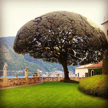 Villa del Balbianello: Вид с нижнего яруса