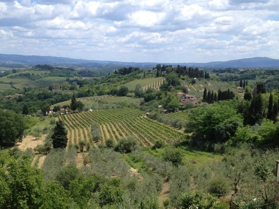 Ciao Florence Tours and Travels: Tuscan hills