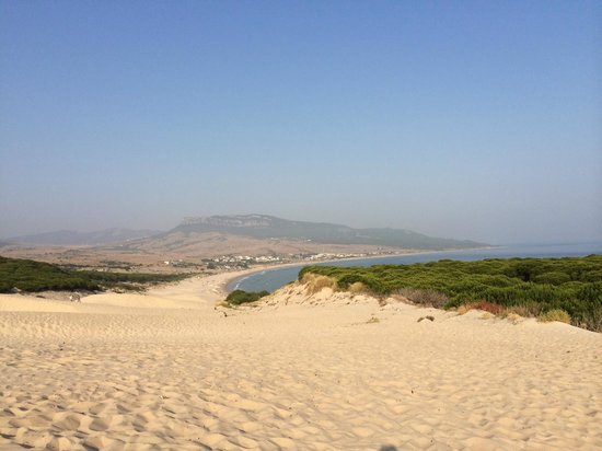 Playa de Bolonia: Vista of the beach and surrounding area from the top of the dunes