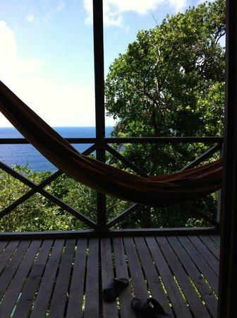 Jungle Bay, Dominica: vue