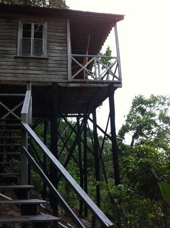 Jungle Bay, Dominica: la cabane dans les arbres