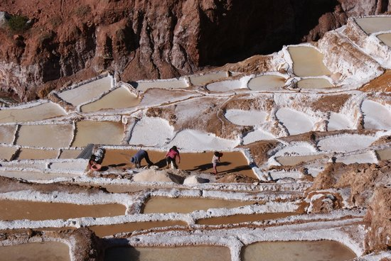 Salinas de Maras: Family working the salt