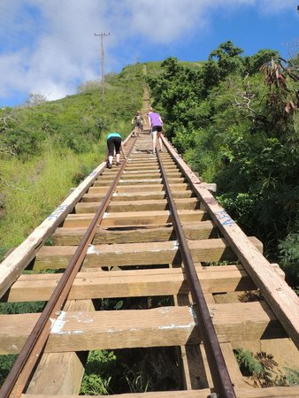 Koko Crater Trail: small bridge on the trail