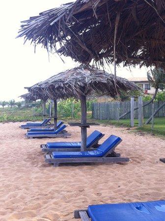 Pousada Praia das Ondas : Espreguiçadeiras do hotel de frente pra praia