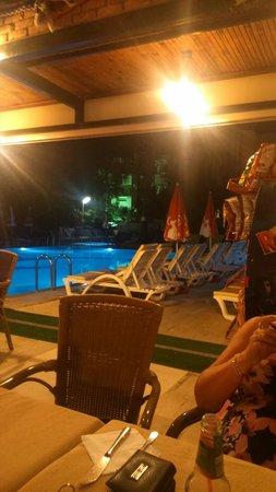 Albatros Apartments: Bar area :-)