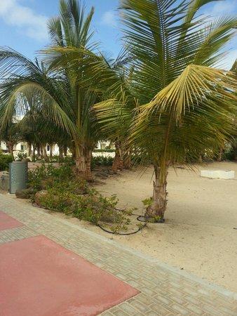 Clubhotel Riu Karamboa: Outside the room's