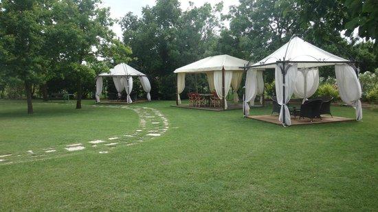 Villa 600: Jardin