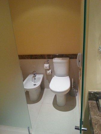Pestana Promenade Ocean Resort Hotel : Loo cubical with the bathroom in the studio apartment