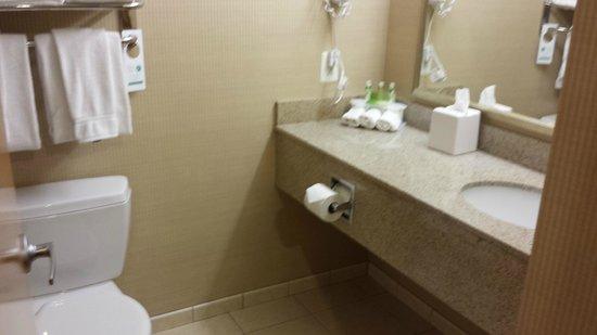 Holiday Inn Express Hotel & Suites Warrenton: BATH
