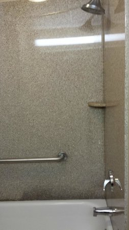 Holiday Inn Express Hotel & Suites Warrenton: BATH/SHOWER