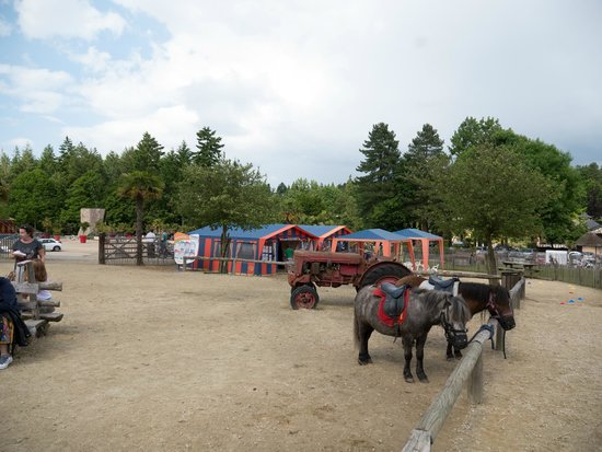 Les Ormes, Domaine & Resort: Horses and clubs