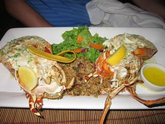 Four Seasons Resort Nevis, West Indies: Lobster