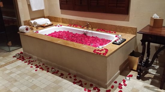 Royal Isabela : Pure romance
