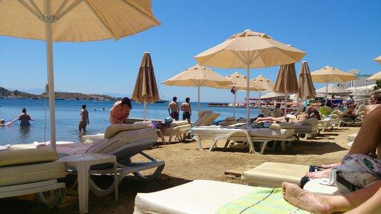 Turihan Hotel : turihan beach