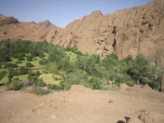 Desert Dream: 2