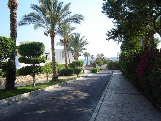 Tiran Island Hotel: дорога к пляжу