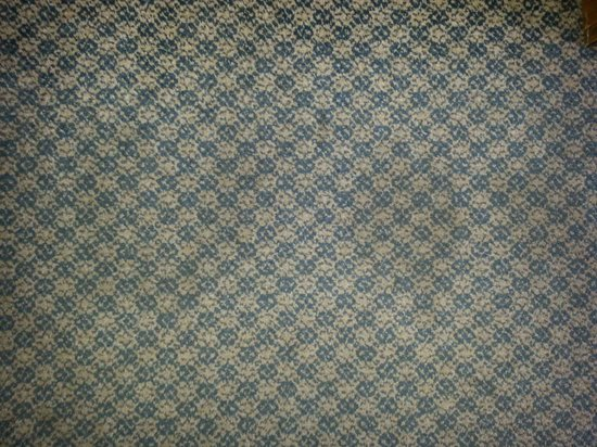 Fern Valley Hotel and Conference Center : stained carpet