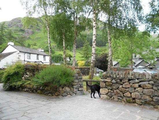 National Trust Campsite - Great Langdale: fantastic views