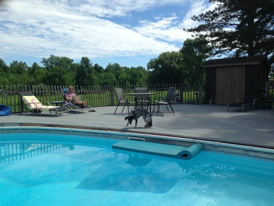 Audrey's Farmhouse Bed & Breakfast : Tanning by the pool