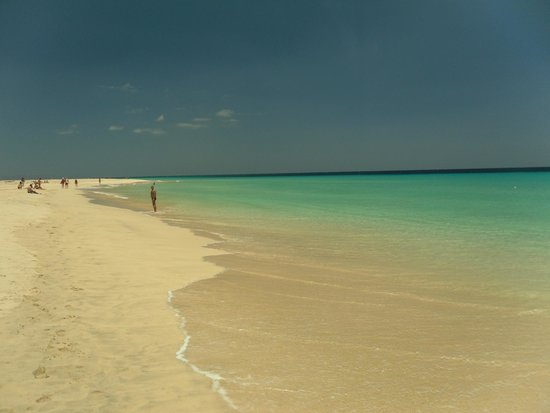 TUI MAGIC LIFE Fuerteventura: the beach