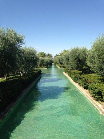 Club Med Marrakech La Palmeraie : Les extérieurs