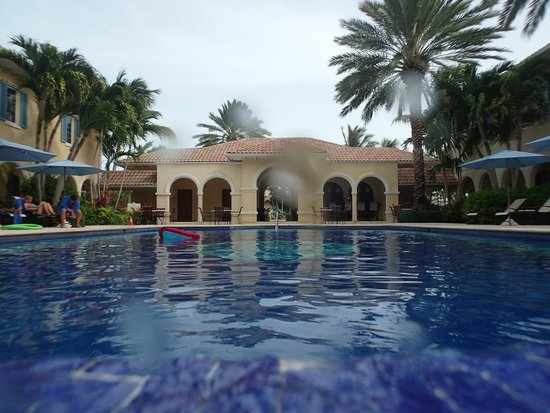 Villa Renaissance : Pool view