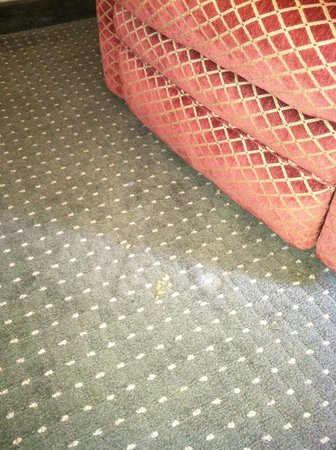 Drury Inn & Suites Las Cruces: Food on the floor