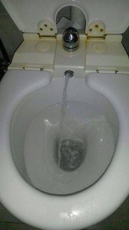 Bagno con super doccia spaziosa foto di hotel coelho for Vater con bidet