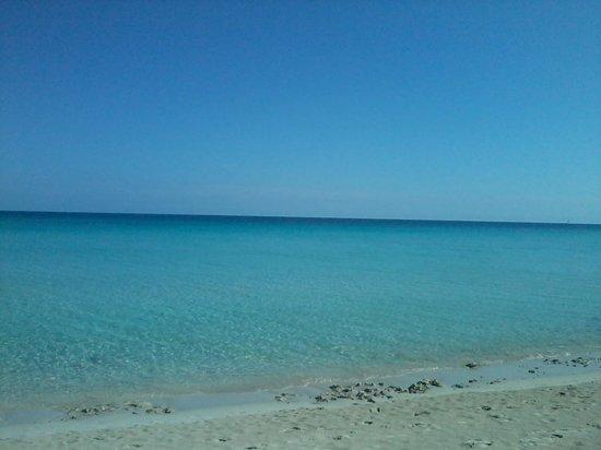 Hotel Bella Costa: the sea