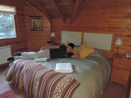 Bosque Dormido Cabañas & Spa : HABITACION