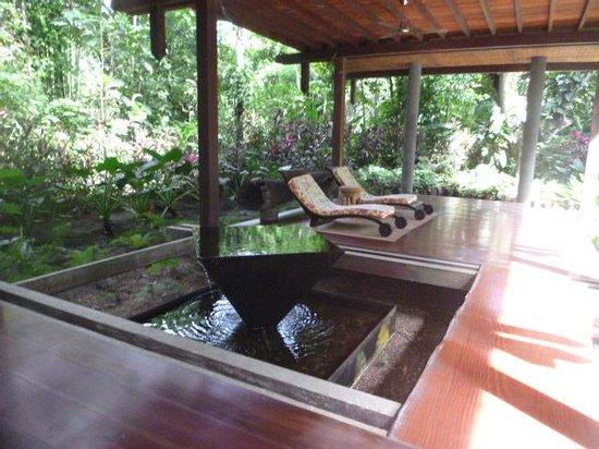 Iguana Lodge: Lounge area IL