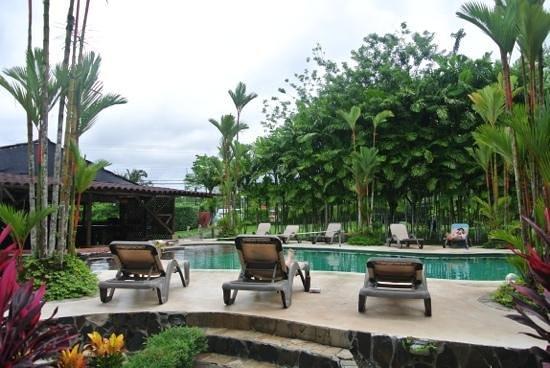 Arenal Backpackers Resort : nice pool!