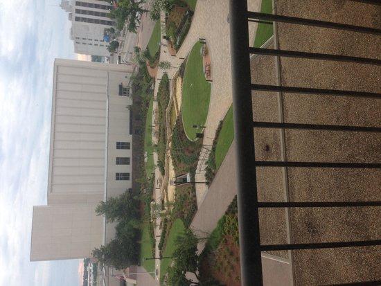 Hyatt Regency Tulsa: Beautiful views and park down below.