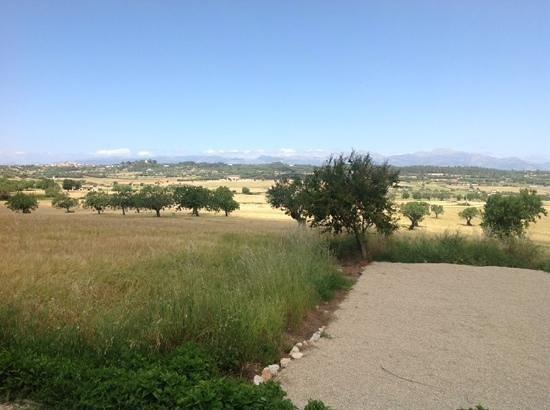 Agroturismo sa Rota d'en Palerm: Auf der Terrasse...