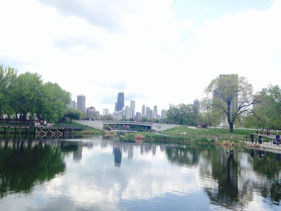 Lincoln Park Zoo : View from the zoo