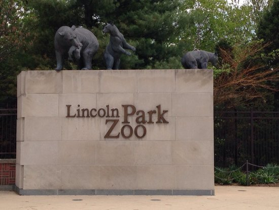 Lincoln Park Zoo : Zoo