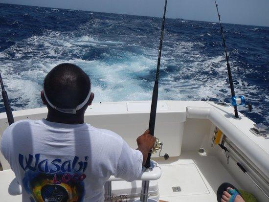 Wasabi Loco Sportfishing Adventures : Pulling Baits