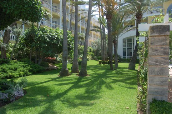 IBEROSTAR Albufera Playa : Gardens