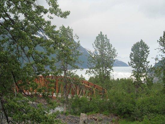 Kenai Fjords Tours : From the train