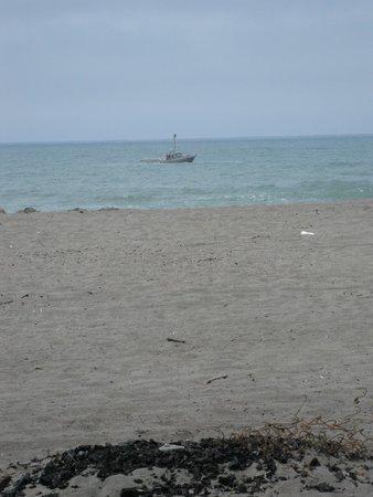 Ferndale, Californie : Centerville Beach, Fortuna