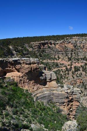 Bright Angel Lodge: Vista do Grand Canyon