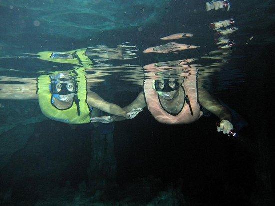 Edventure Tours: Great under water picture...thanks David!