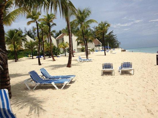 Melia Nassau Beach - All Inclusive: Lettini spiaggia